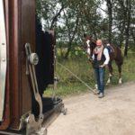 Ведущий на свадьбу Сергей Славин